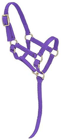 Tough 1 Tough-1 Miniature Nylon Halter, Purple, Regular Mini