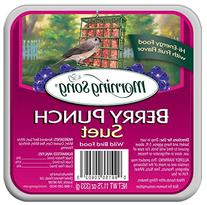 Morning Song 1120602 Berry Punch Suet Wild Bird Food, 11-3/4