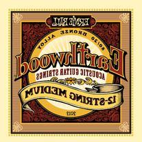 Ernie Ball Earthwood 12-String Medium 80/20 Bronze Acoustic