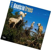 Goats in Trees 2015  Wall Calendar