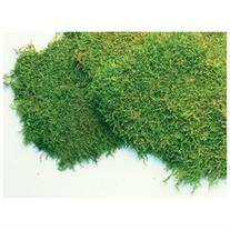 Super Moss 21512 8-Oz. Preserved Sheet Moss