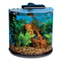 Tetra 29234 Half Moon Aquarium Kit, 10-Gallon