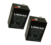 6V 4.5AH SLA Battery Replaces cp0660 gp645 lcr6v4p hk-3fm4.5