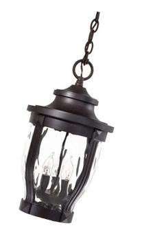 Minka Lavery 8764-166, Merrimack, 3 Light Chain Hung, Corona