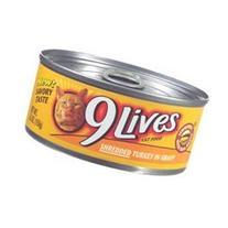 9 Cat Food Shredded Turkey In Gravy 22 OZ