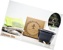 9GreenBox: Bonsai Seed Kit - Chinese Elm