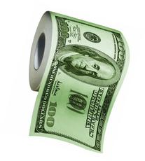 BigMouth Inc 100 Dollar Money Funny Toilet Paper, Novelty