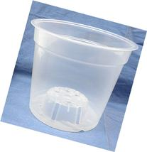 Clear Plastic Teku Pot for Orchids 6 inch Diameter -