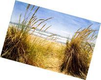 Dune Grass 3 , 13x20in