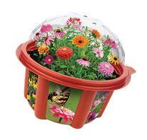 Dunecraft Heirloom Flowers Garden Science Kit
