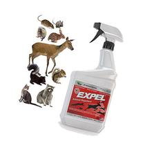 PREDATORGUARD Expel Natural Animal Repellent, Mice & Rodent Repellent - Ready to Use, Weatherproof - 32oz Easy Spray Bottle