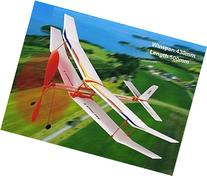 Fight Hawk II Rubber Band Elastic Powered Glider Plane Kit