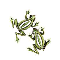 Glowing Garden Frogs Wall Decor - Set Of 2