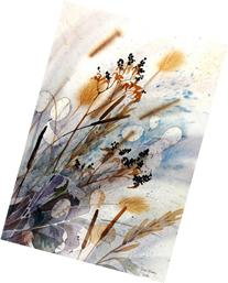 Gone to Seed, Photolithographic Print of Watercolor, Nature