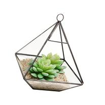 Hanging Clear Glass Prism Air Plant Terrarium / Tabletop
