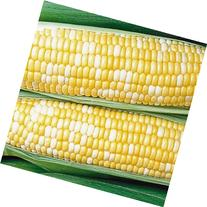 Jays Seeds 0602 Honey N' Pearl Sweet Corn, 75 Seeds