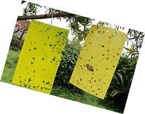 KINGLAKE® 10 PCS Dual Sided Yellow Sticky Fly Traps Paper
