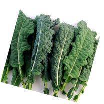 Kale Italian Lacinato Nero Toscana Seeds ► Certified