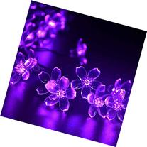 Solar String Lights, 21ft 50 LED Fairy Flower Blossom