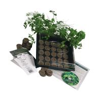 Living Whole Foods K5-1 Indoor Culinary Herb Garden Starter