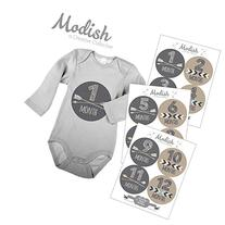 Modish - Creative Collective 12 Monthly Baby Stickers, Brown