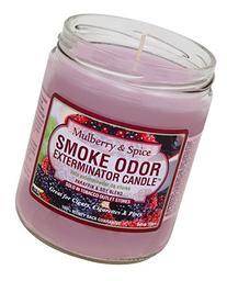 Smoke Odor Exterminator Mulberry and Spice 13oz by Smokers