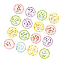 Pearhead Pregnancy Milestone Photo Sharing Belly Stickers,