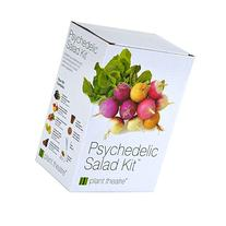 Plant Theatre Psychedelic Salad Kit - 5 Fantastic Salad