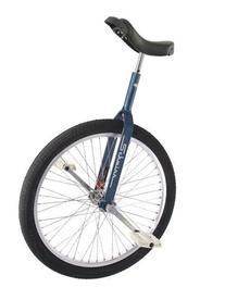 "Schwinn 24"" Unicycle w/ 350mm Seat Post - Retro Blue"
