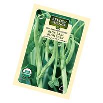 Seeds of Change Certified Organic Bean, Blue Lake Bush - 17.