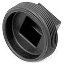 2in Abs Mpt Plug