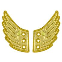 Shwings Shoe Accessories: Gold Foil Wings