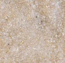 Carib Sea ACS05840 Super Naturals Crystal River Sand for