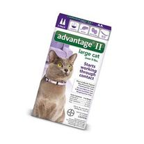 Advantage II Flea Control Large Cat  - 2 Month