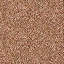 Carib Sea SCS00722 2-Pack Reptiles Calcium Substrate Sand,