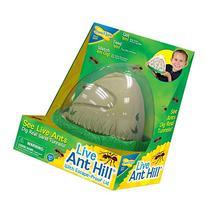 Ant Farm Viewing Habitat - Escape Proof Ant Hill Kit