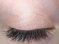 Apricot Eye Makeup Eye Shadow Eyeliner- THE BEST Peach