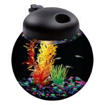 API Betta Kit Globe Fish Tank with LED Lighting, 1-1/2-