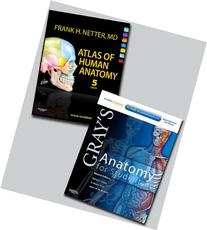 Netter Atlas of Human Anatomy and Gray's Anatomy for