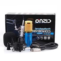 PENSON & CO. Audio Mic Professional Condenser Microphone