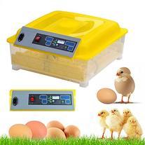 Radical Deal Automatic 48Eggs Digital Clear Egg Incubator