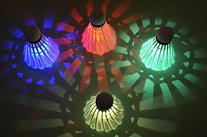 Harvest LED Badminton Shuttlecock Dark Night Glow Birdies