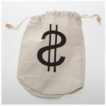 $ Bag Party Accessory