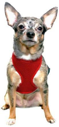 Anit Accessories Basic Mesh Harness, Large, Red