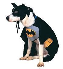 Batman Medium Pet Costume