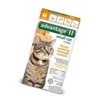 Bayer Advantage 2 Small Cat 2-Pack 5-9# Orange