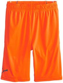 PUMA Big Boys' Pure Core Short, Fire Orange, Medium