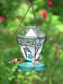Birdscapes 701 Hummingbird Edition 24-Ounce Glass