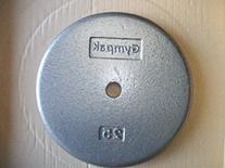 25 lb. Grey Standard Plates