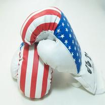 Kids Boxing Gloves - USA